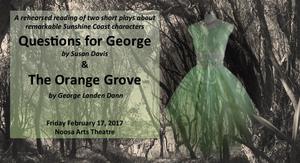 The Orange Grove 2017 448